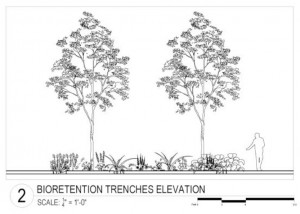 Drawings for the bioretention trenches were prepared summer 2014.